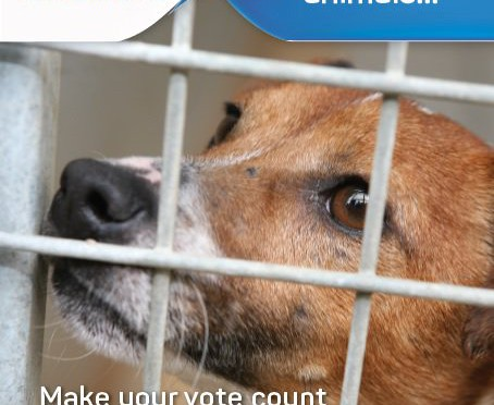 RT @ISPCA1: Read the #ISPCA's 2016 Manifesto &…